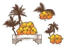 Tropische elements1 Royalty-vrije Stock Afbeelding