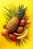 Tropische exotische Früchte sortiert Lizenzfreie Stockfotografie