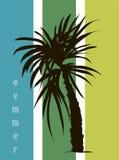 Tropische Fahne für Ihr Geschäft Lizenzfreies Stockbild
