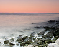 Tropische Farben lizenzfreie stockfotografie