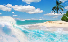 Tropische Feiertage im Paradies Stockfotos