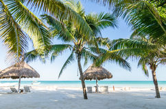 Tropische Ferienansicht mit Palmen am exotischen sandigen Strand auf karibischem Meer Lizenzfreie Stockfotos