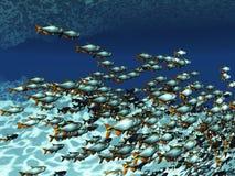 Tropische Fische Stockbild