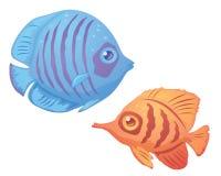 Tropische Fische lizenzfreie abbildung