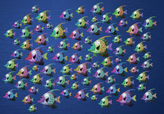 Tropische Fische auf Weiß Lizenzfreies Stockbild