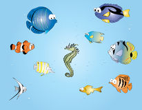 Tropische Fische der Karikatur Lizenzfreie Stockfotografie
