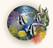 Tropische Fische der Unterwasserkarte vektor abbildung