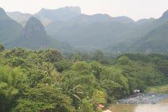 Tropische foresn en bergen Stock Foto