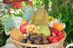 Tropische Früchte der Vielzahl lizenzfreie stockbilder