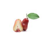 Tropische Frucht; Frischer Malabarapfel lokalisiert auf weißem Hintergrund Lizenzfreie Stockfotografie