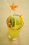 Tropische Frucht-Locher Lizenzfreies Stockbild