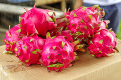 Tropische Frucht Pitaya& x28; Rotes Dragon Fruit u. x29; lizenzfreie stockfotografie