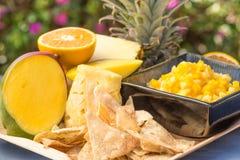 Tropische Frucht-Salsa Lizenzfreies Stockfoto