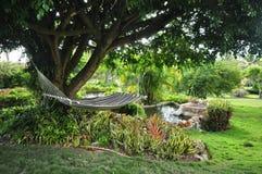 Tropische Garten-Hängematte Stockbild