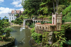 Tropische Gartenansicht Stockbild