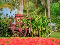 Tropische Gartendekoration des alten roten Ochsen-Wagens durch das Meer stockbild