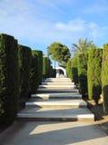 Tropische Gassenperspektive mit Schritten, Mallorca Lizenzfreies Stockbild