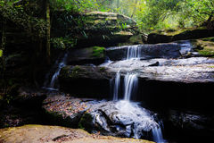 Tropische gebiedswaterval in Nationaal Park Royalty-vrije Stock Afbeeldingen