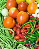 Tropische gemengde groenten voor gezond Royalty-vrije Stock Afbeeldingen