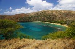 Tropische Golf Stock Afbeelding
