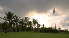 Tropische golfcursus bij zonsondergang, Dominicaanse Republiek, Punta Cana stock videobeelden