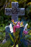 Tropische grafsteen stock foto's