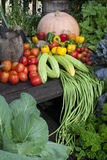 Tropische groente Royalty-vrije Stock Fotografie