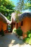 Tropische Hütten mit den Dächern bedeckt mit Schilfen Lizenzfreies Stockfoto
