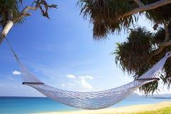Tropische hangmat royalty-vrije stock foto's