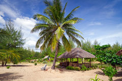 Tropische hut bij het strand Stock Foto's