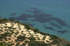 Tropische Insel-Küste Stockfoto