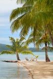 Tropische Insel mit Palmen Stockfotos