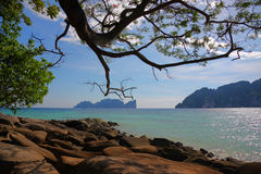 Tropische Inseln Stockbilder