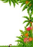 Tropische installaties en papegaaien. Stock Afbeeldingen