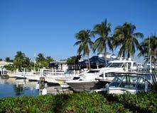 Tropische jachthaven stock afbeelding