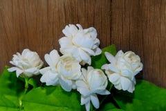 Tropische jasmijnbloem op hout Jasmijnbloemen en bladeren op br royalty-vrije stock foto
