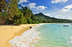 Tropische Küstenlinie auf Seychellen-Insel Lizenzfreies Stockbild