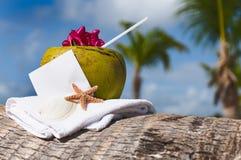 Tropische karibische Stranderfrischung a Kokosnusscocktail Starfish Stockfotos