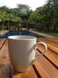 Tropische koffie Stock Afbeeldingen