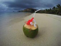 Tropische kokosnotencocktail op het strand Stock Foto