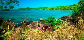 Tropische kust Royalty-vrije Stock Foto's