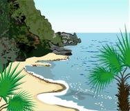 Tropische kust Stock Foto's