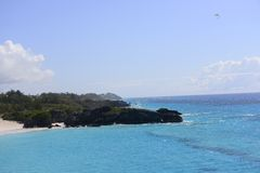 Tropische Kustlijn stock afbeeldingen