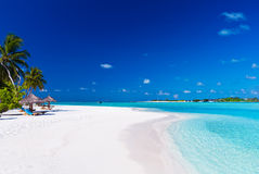 Tropische Lagune mit Palmen Stockfoto