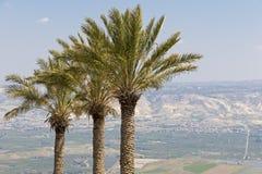 Tropische Landschaft Lizenzfreies Stockfoto