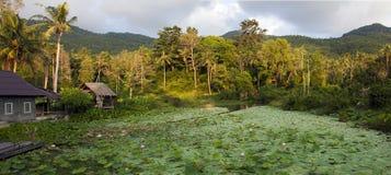 Tropische Landschaft der James Bond-Inselansicht Lizenzfreie Stockbilder