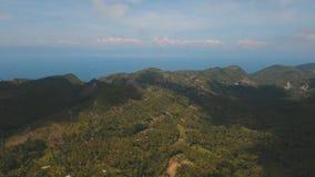 Tropische Landschaft mit Palmen philippinen stock video