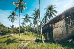 Tropische Landschaft von Thailand Stockbild