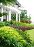 Tropische landschaftlich verschönernauslegung Lizenzfreie Stockbilder