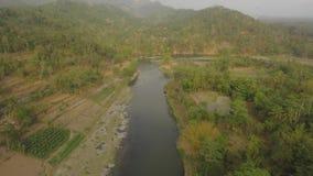 Tropische landschapsrivier, landbouwersland stock videobeelden